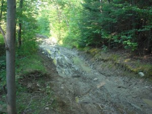 Wright Farm Road